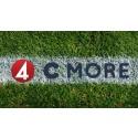 TV4 och C More säkrar rättigheterna till UEFA fotbolls-EM 2020