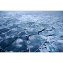 Renare luft i Europa avslöjar ett varmare Arktis
