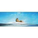 BLUE PLANET II - Live in Concert till Malmö Arena