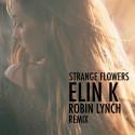 Lyssna på sommarens remix med Elin K och Robin Lynch