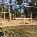 Sandvikenhus inviger ny attraktiv utemiljö i Norrsätra