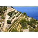 Nyhet: Testa dina sinnen med vinresa till populära Mallorca