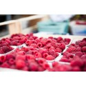 10 smarta sätt att äta frukt