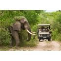 90 matkatoimiston edustajaa lähtee opintomatkalla Etelä-Afrikkaan