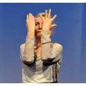 Musik hören und sehen. Eurythmie-Solo- und -Duo-Festival am Goetheanum