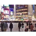 Rejse til Tokyo