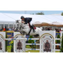 Probably the best Horse Show: Falsterbo Horse Show och Carlsberg Sverige i nytt samarbetsavtal