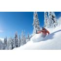 Fysioterapeut: Skitræning bør foregå hele året rundt