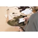Lösningen på illaluktande skor och svettiga fötter