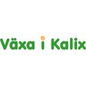 Arbetsmarknadsmässa växer i Kalix