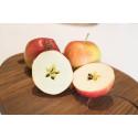 Santana – ett smakrikt svenskt äpple som nu kan köpas året runt.