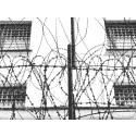 Seminarium den 15 maj: Min son är politisk fånge