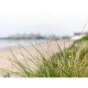 BoKlok köper mark på Skansen i Simrishamn