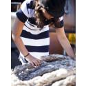 3,5 mio. kr. til Håndværk på Havnen
