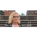 SEKTIONEN av Ingrid Elfberg - om youtubers och ondska på nätet
