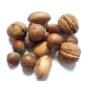 Hazelnut Market will Grow at 5.9 CAGR by 2026 End : PMR Report