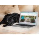 Ny e-handel för Tibergs Möbler