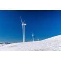 Kraftig utbyggnad av vindkraft kan ge lägre elpriser