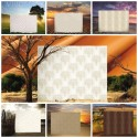 New Product: Wallcovering from Vision Collection, Warner, Goodrich
