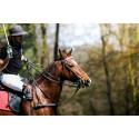 Oplev polo, kongernes sport på slottet