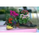 Barn i Stan planterar krukväxter i uttjänta skor och väskor