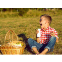 New Pure Dairy campaign raises the bar  for dairy ingredients