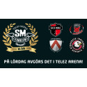 SM-finalerna i Innebandy firar 15 år i Tele2 Arena