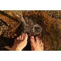 Har du koll på dina fötter?