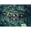 Harald Lassen New Quartet, Bodil Niska, The Four Freshmen og ZigityBop!