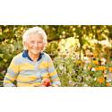 En stödjande vårdmiljö för personer med demens