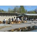 Naturens hus firar 10-års jubileum 15 maj