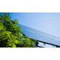 Elkems ansatte med kjempeordre på solcellepaneler