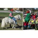 Festligt firande av Förskolans dag på Sundsvalls förskolor