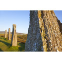 Expo-sing Orkney's past