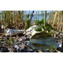 Ny rapport: Förpackningar och plast vanligaste marina skräpet