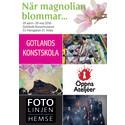Vårutställning med Konstskolan, Fotolinjen och Öppna Ateljéer!