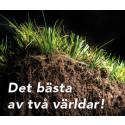 XtraGrass2 - hybridgräs