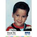 Oscar Zia är en av idolerna i årets idolkortskampanj för Bris!