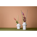 Herald of spring: the new Rosenthal vases collection