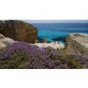 4 tips til spændende byer på Sicilien