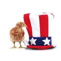 Livsmedelsexportörer till USA - är ni redo för FSMA?