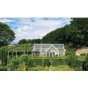 Prince's Foundation Glasshouse Range – ny stjärna från Hartley Botanic!