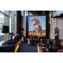 Richard Prince kunstverket The Horse Thief er på utlån til Astrup Fearnley Museet