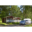Fortsatt tillväxt och hög investeringsnivå inom svensk camping