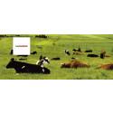 Stark uppgång för Land Lantbruk