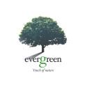 Suosittuun Evergreen tuoteperheeseen uusi tulokas