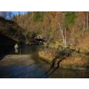 Stenhård konkurrens om geologiskt pris – Bjurälvens karstlandskap nominerad