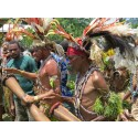 Sejr for regnskoven i Papua Ny Guinea – 360.000 hektar skov fredet