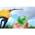 Biodiesel Market Outlook to 2023 – Diester Industries, Neste Oil, ADM, Infinita Renovables, Biopetrol, Cargill, Ital Green Oil, Glencore, Louis Dreyfus, Renewable Energy Group, RBF Port Neches