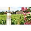 Monte Stelle – Vinet från stjärnkullen!